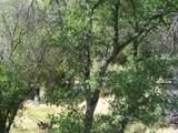 42504 Sierra Drive - Photo 53