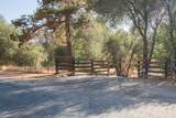 41401 Balch Park Road - Photo 3