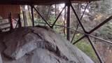 54622 Manzanita Drive - Photo 62