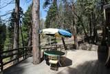 52157 Spring Drive - Photo 4