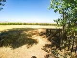 33766 Road 204 - Photo 30