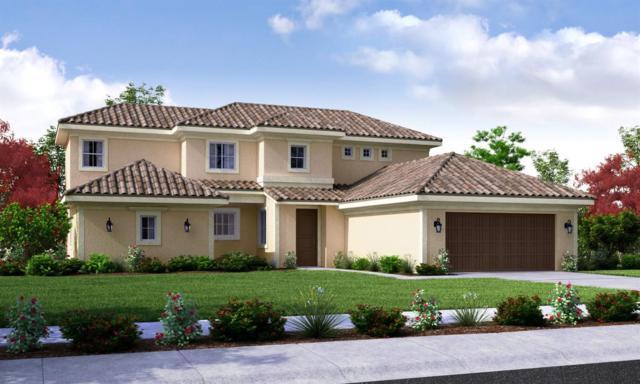 6532-Lot 24 W Wren Avenue, Visalia, CA 93291 (#133984) :: The Jillian Bos Team