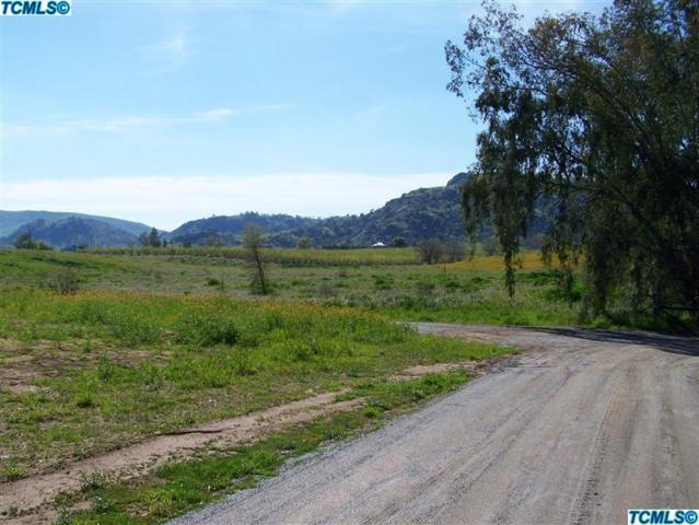 0 Road 206, Woodlake, CA 93286 (#135181) :: The Jillian Bos Team