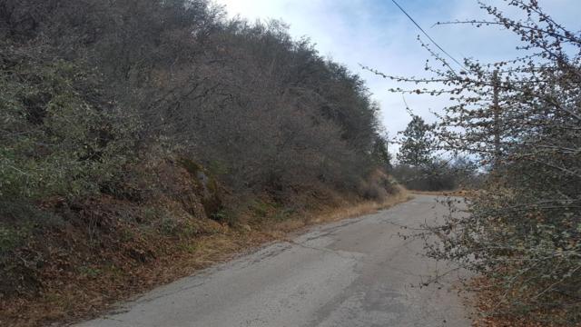 0-Lot 24 Rocking K Drive, California Hot Spgs, CA 93207 (#135243) :: The Jillian Bos Team