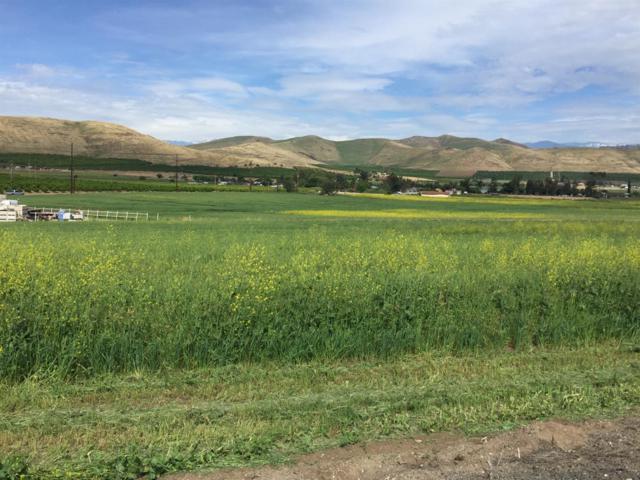 0 E Scenic Drive, Porterville, CA 93257 (#135260) :: The Jillian Bos Team