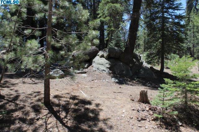 0 Sierra View Drive, Ponderosa, CA 93265 (#135323) :: The Jillian Bos Team