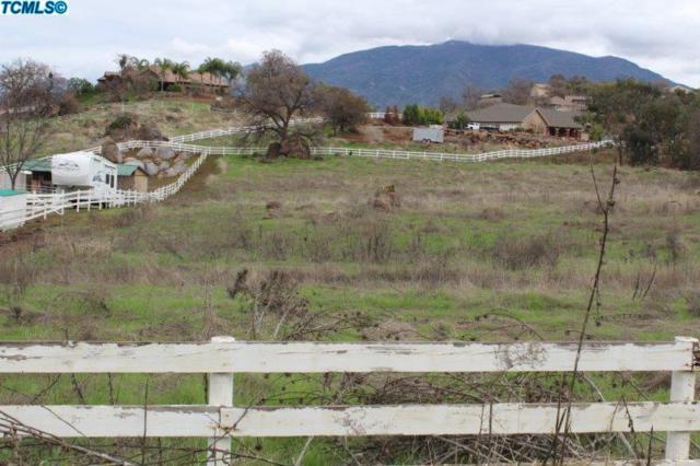 16730 Coyote Drive, Springville, CA 93265 (#135324) :: The Jillian Bos Team