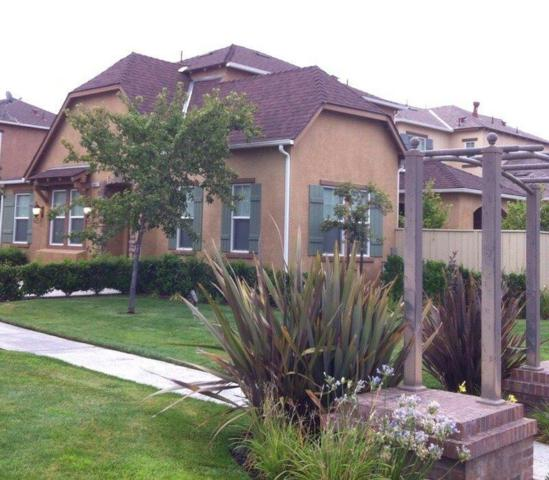 3907 Harlan Ranch Boulevard, Clovis, CA 93619 (#136045) :: The Jillian Bos Team