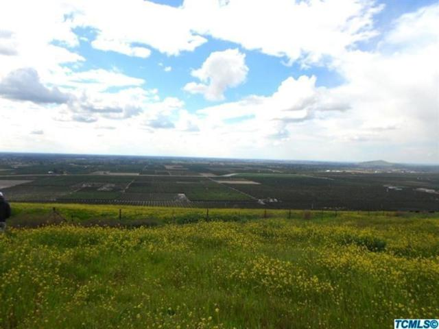 0-Lot 37 High Sierra Drive, Exeter, CA 93221 (#138648) :: Robyn Graham & Associates