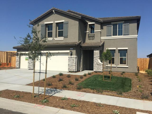 1042 Ridge Creek Way, Dinuba, CA 93618 (#138884) :: The Jillian Bos Team