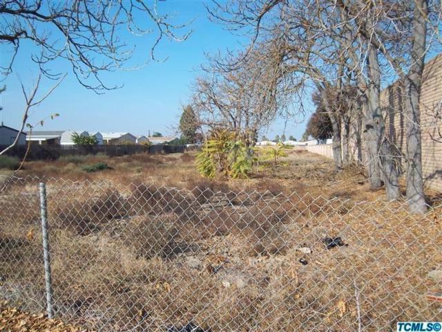 966 E Rankin Road E, Tulare, CA 93274 (#139834) :: Robyn Graham & Associates