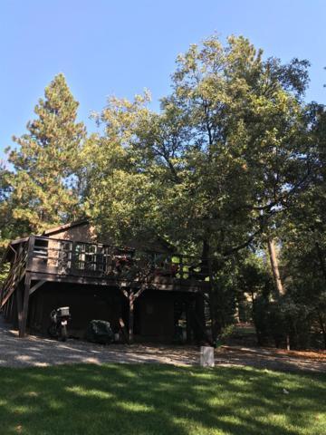 1271 Wy Court, Camp Nelson, CA 93265 (#141780) :: The Jillian Bos Team