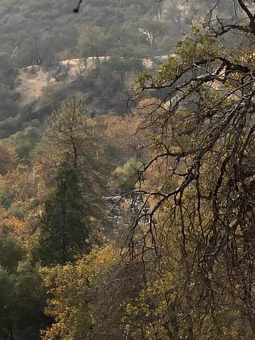 0 N North Fork Drive, Three Rivers, CA 93271 (#142606) :: Robyn Graham & Associates