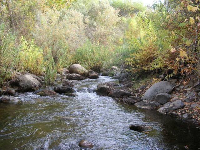 0 Cherokee Oaks, Three Rivers, CA 93271 (#142674) :: Robyn Graham & Associates