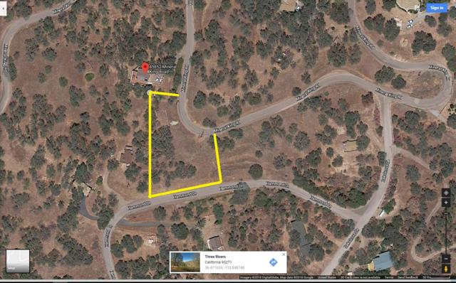 0 .78 Acres Of Vacant Land, Three Rivers, CA 93271 (#142691) :: Robyn Graham & Associates