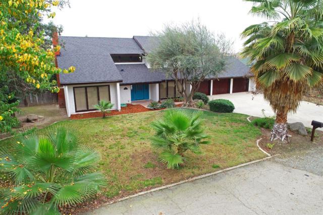 1309 Mae Carden Street, Visalia, CA 93291 (#143478) :: The Jillian Bos Team