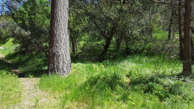 2 Lots On Rabbit Foot Trail, California Hot Spgs, CA 93207 (#143816) :: The Jillian Bos Team