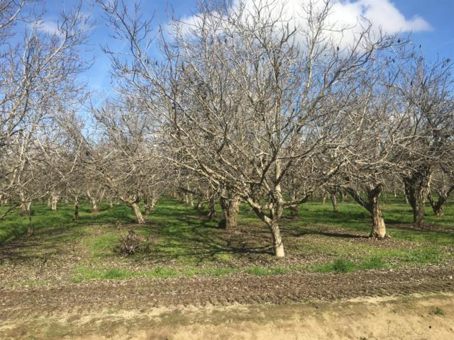 24398 Road 148, Tulare, CA 93274 (#144402) :: The Jillian Bos Team
