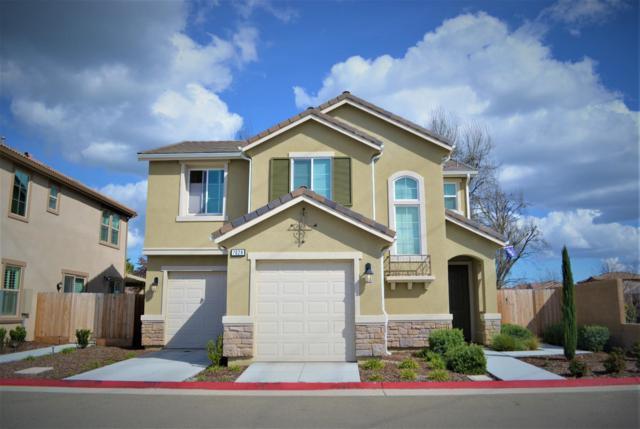 7028 N Cedar Hill Drive, Fresno, CA 93722 (#144809) :: The Jillian Bos Team