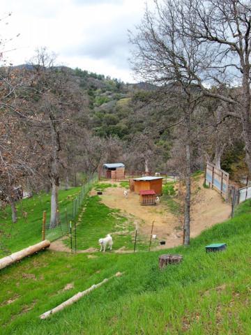 0 Capanero Oaks, California Hot Spgs, CA 93207 (#145086) :: The Jillian Bos Team