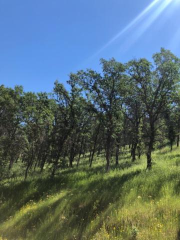 0 Ferndale, Three Rivers, CA 93271 (#145399) :: The Jillian Bos Team