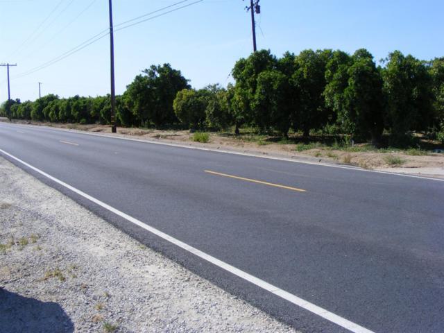 22666 Avenue 344, Woodlake, CA 93286 (#145488) :: The Jillian Bos Team