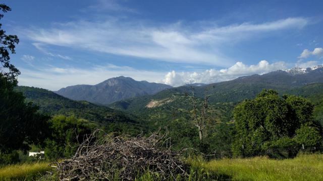 40825 Bear Creek Drive, Springville, CA 93265 (#146096) :: The Jillian Bos Team