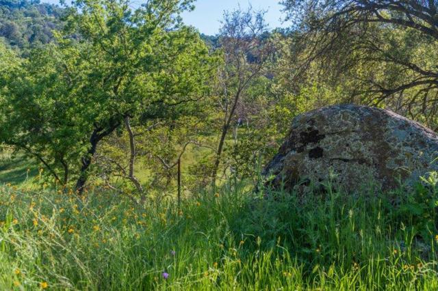 0 Salt Creek, Three Rivers, CA 93271 (#146470) :: The Jillian Bos Team