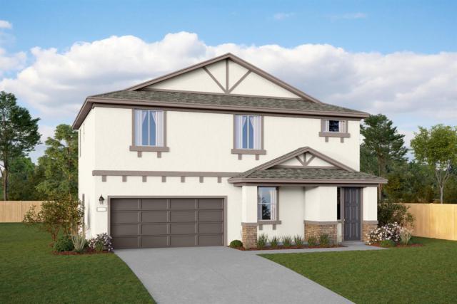3017 E Mary Avenue, Visalia, CA 93292 (#146841) :: Robyn Icenhower & Associates