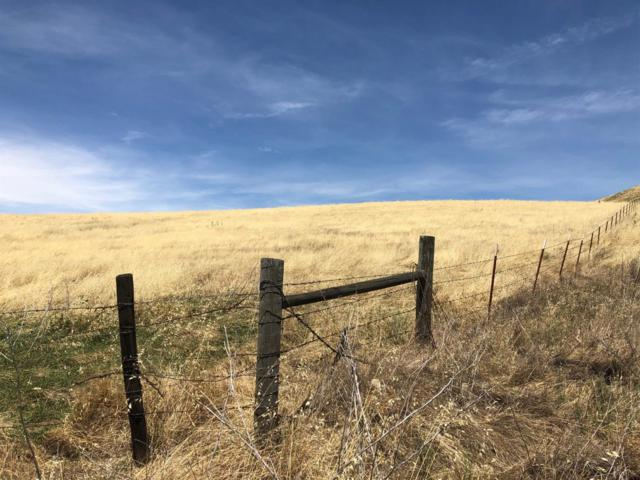 28956 Indian Reservation Road #1, Porterville, CA 93257 (#146862) :: The Jillian Bos Team