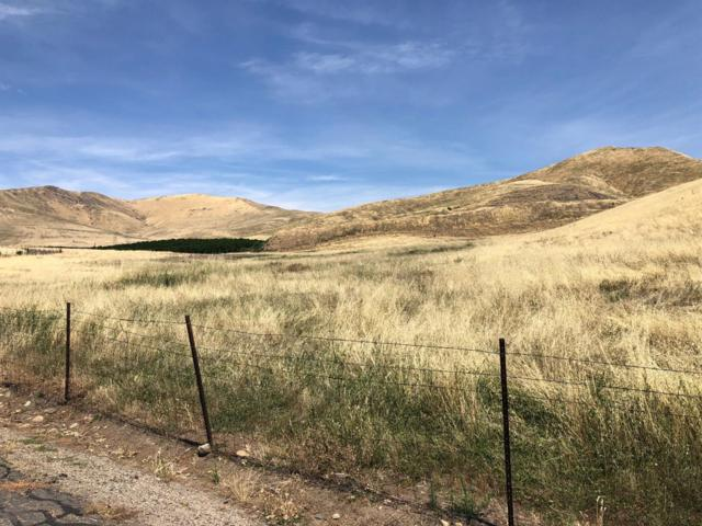 28956 Indian Reservation Road Road #2, Porterville, CA 93257 (#146869) :: The Jillian Bos Team