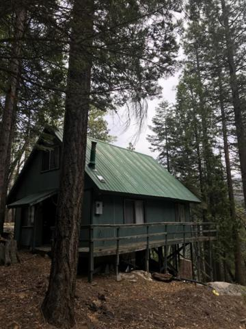 66 Mountain Aire, Camp Nelson, CA 93265 (#147181) :: The Jillian Bos Team