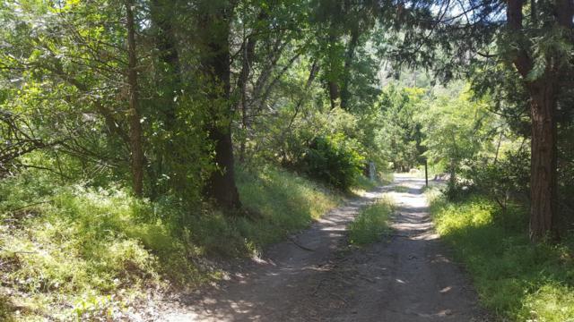 2-Lots on Creek Drive, California Hot Spgs, CA 93207 (#147208) :: The Jillian Bos Team