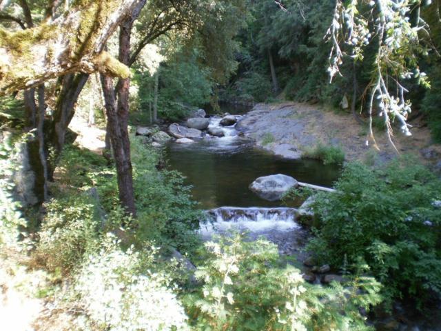 237 Cedar Drive, Pierpoint Springs, CA 93265 (#148196) :: The Jillian Bos Team