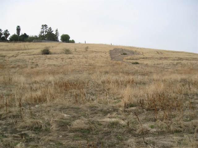0 Scenic Drive, Porterville, CA 93257 (#186944) :: The Jillian Bos Team
