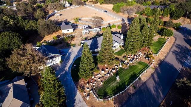 41880 Quail Run Drive, Three Rivers, CA 93271 (#201106) :: Robyn Icenhower & Associates
