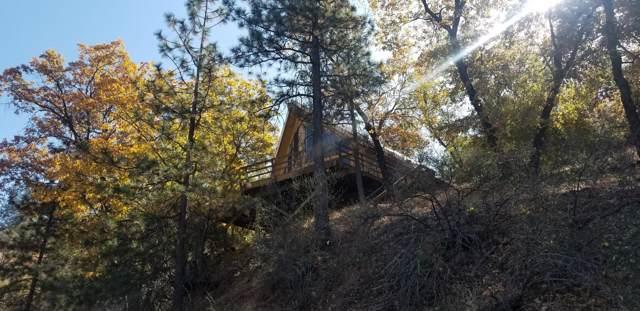 0 Manter Meadow Drive #3, California Hot Spgs, CA 93207 (#201285) :: The Jillian Bos Team