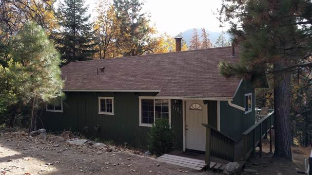 1171 Bourbon Drive, Camp Nelson, CA 93208 (#201566) :: Martinez Team