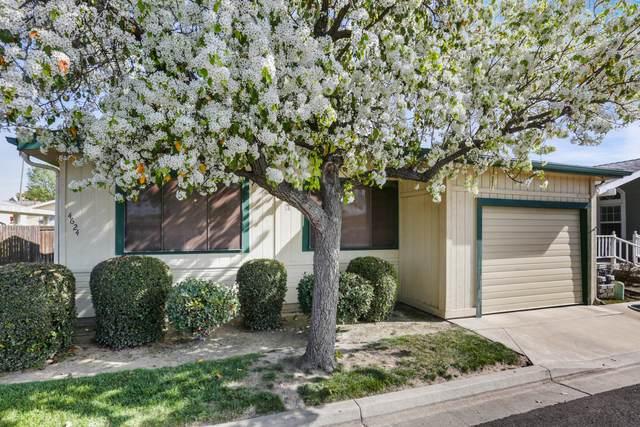 4624 S Terrace Street, Visalia, CA 93277 (#203204) :: Martinez Team
