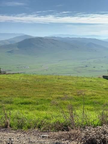 1 High Sierra Drive Lot 66, Exeter, CA 93221 (#203295) :: Martinez Team