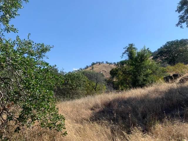 0 Mynatt Drive, Three Rivers, CA 93271 (#203301) :: The Jillian Bos Team