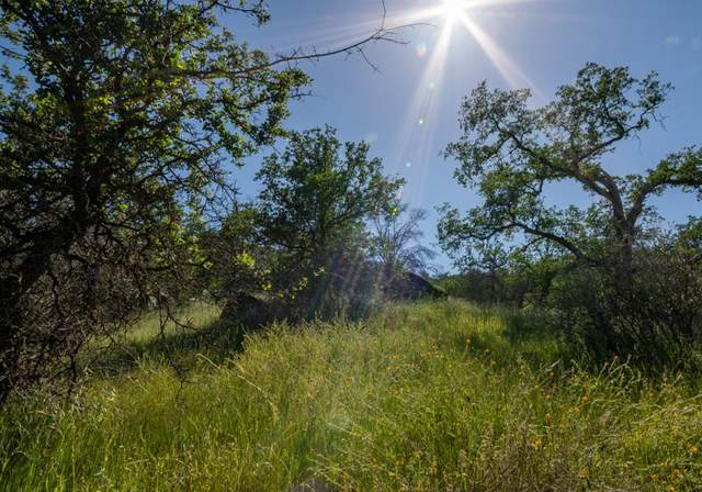 0 Ferndale Drive, Three Rivers, CA 93271 (#203609) :: The Jillian Bos Team