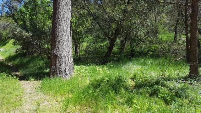 2 Lots On Rabbit Foot Trail, California Hot Spgs, CA 93207 (#204321) :: The Jillian Bos Team