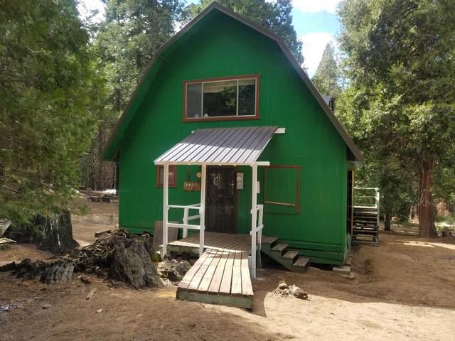 9 N Mountain Aire N, Camp Nelson, CA 93208 (#204811) :: Martinez Team