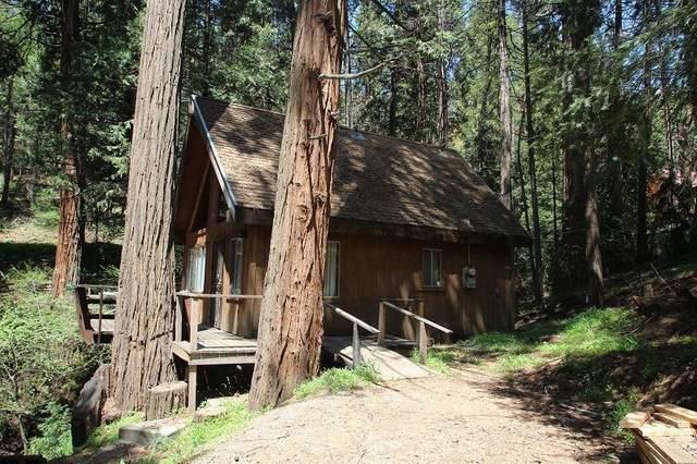941 Highway 190, Camp Nelson, CA 93265 (#204861) :: Martinez Team