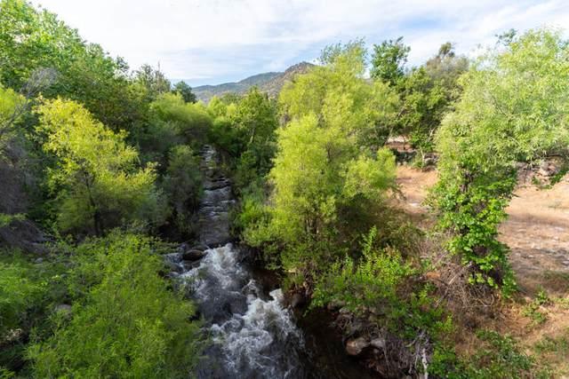 40508 Sierra Drive Drive, Three Rivers, CA 93271 (#204912) :: The Jillian Bos Team