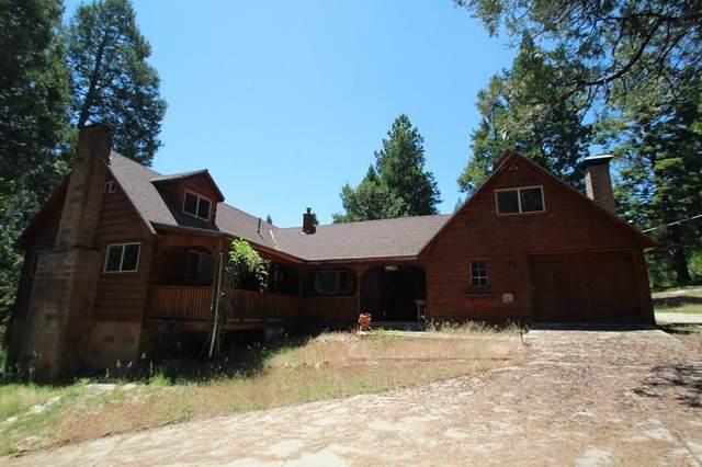 52954 Alpine Drive, Alpine Village, CA 93265 (#205355) :: The Jillian Bos Team