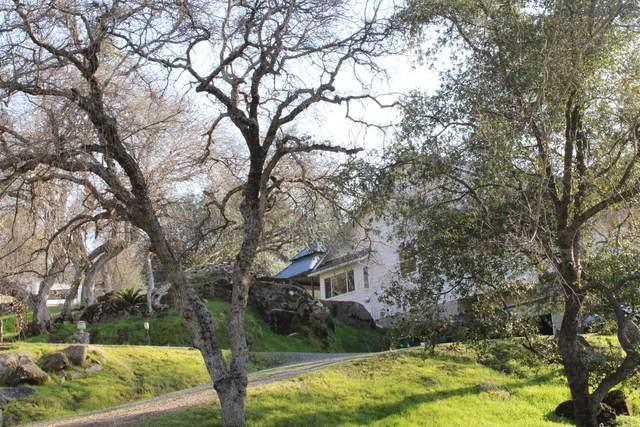 40401 Bear Creek Road, Springville, CA 93265 (#205422) :: The Jillian Bos Team