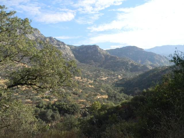 Highway 198 Drive, Three Rivers, CA 93271 (#206198) :: The Jillian Bos Team