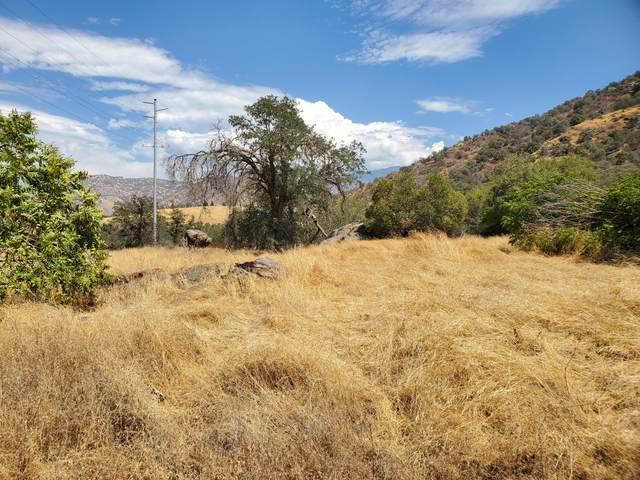 0 Sierra Drive, Three Rivers, CA 93271 (#206441) :: Martinez Team